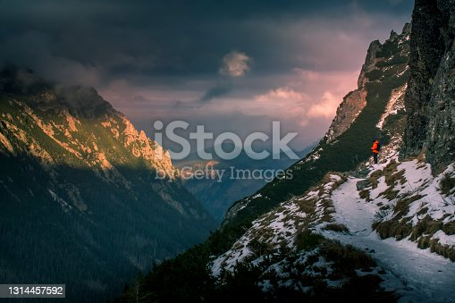 istock Lonely tourist on the abyss 1314457592