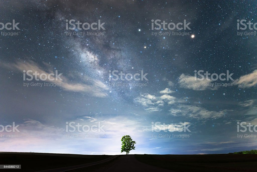 Lonely tree and milky way. stock photo