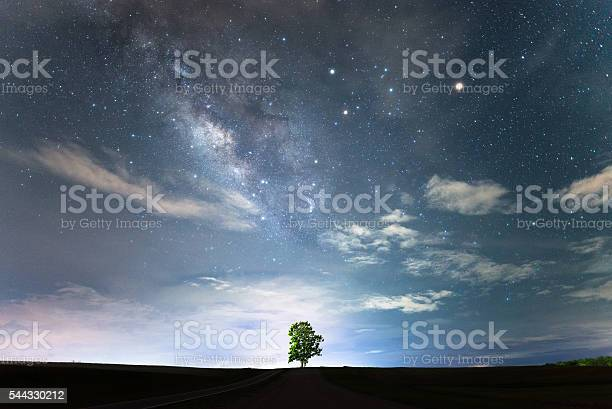 Photo of Lonely tree and milky way.