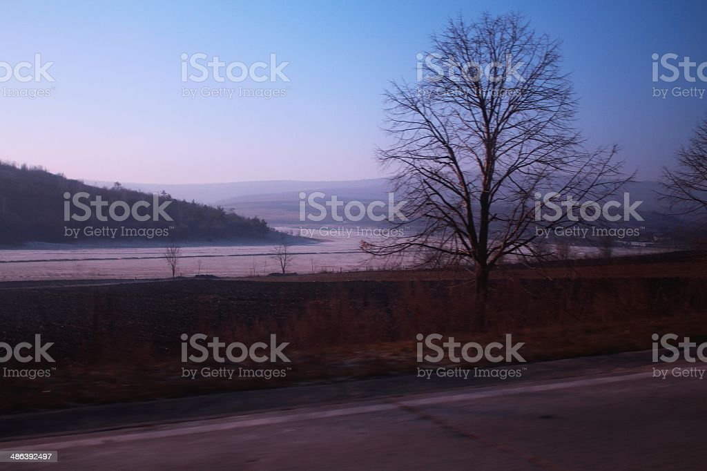 Lonely tree at road royalty-free stock photo