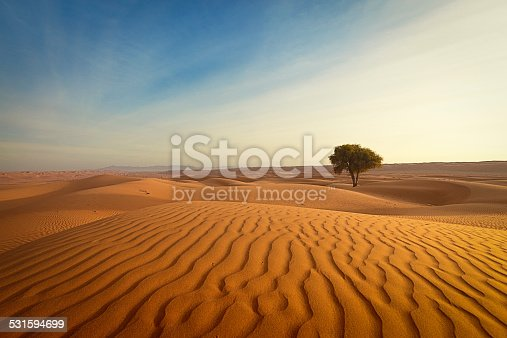 istock lonely tree in the desert of oman 531594699