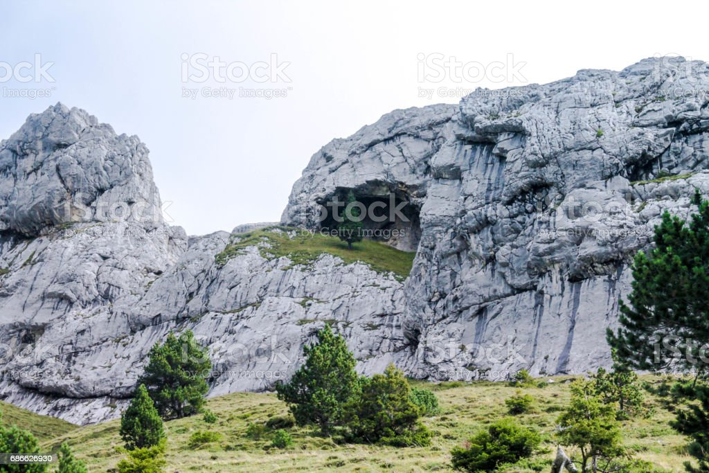 Lonely tree in the rocks. Lonely tree in the mountains. royalty-free stock photo