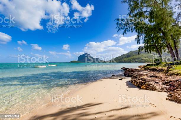 lonely tropical beach on mauritius island, africa