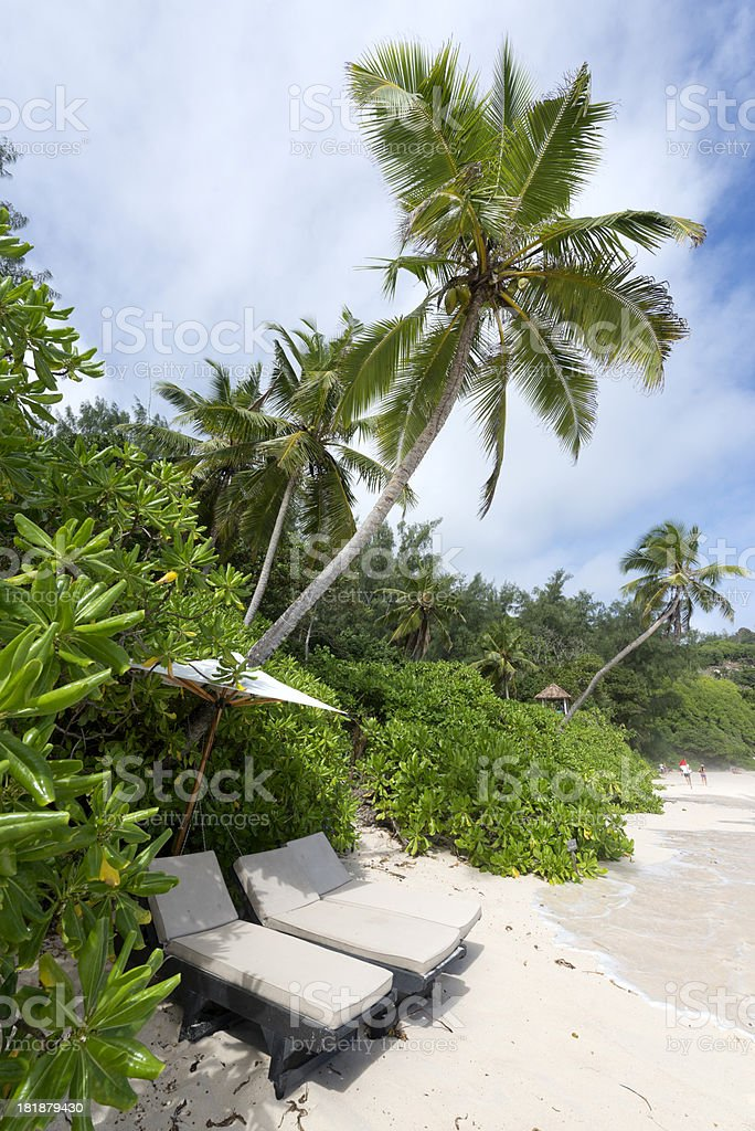Lonely tropical dream beach royalty-free stock photo
