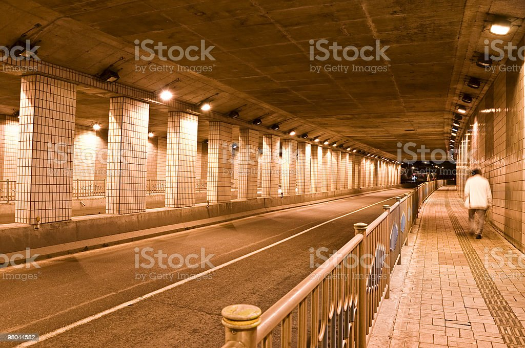 Lonely Walker royalty-free stock photo