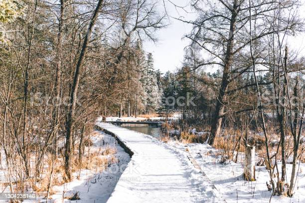 Photo of Lonely Walkway