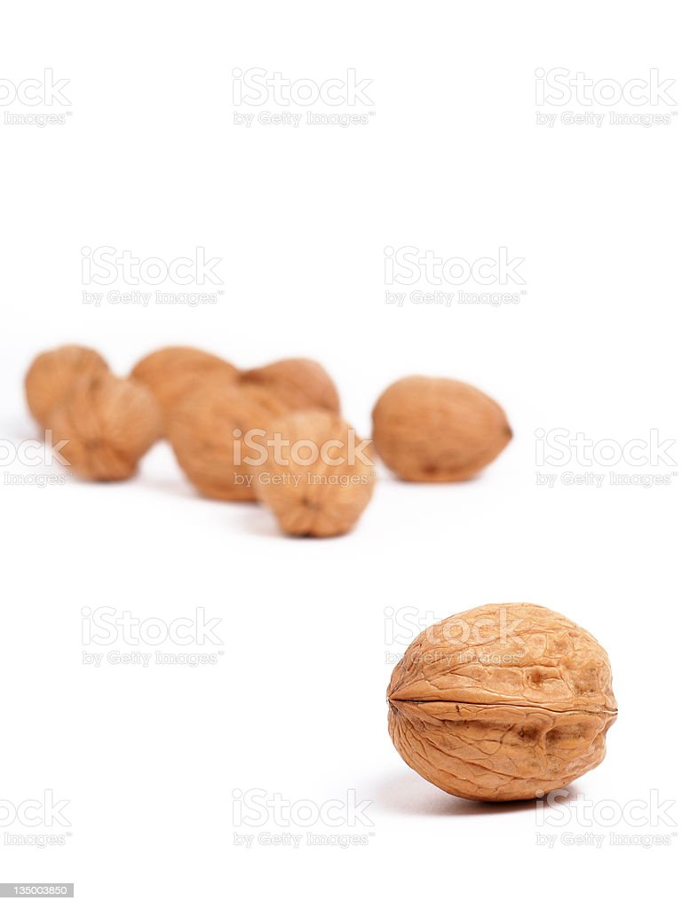 Lonely walnut royalty-free stock photo