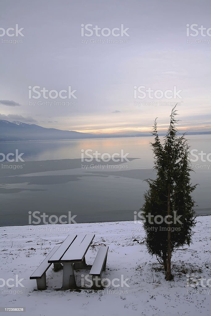 Lonely Winter Lake royalty-free stock photo