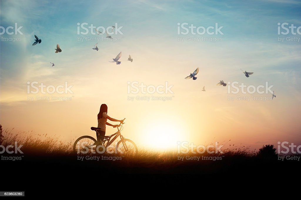 Lonely woman standing with bicycle on road of paddy field stock photo