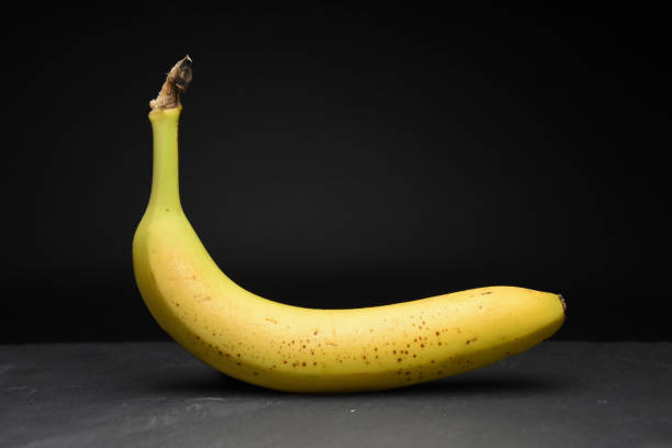 Lonely yellow banana on dark black background in studio healthy food phtography stock photo