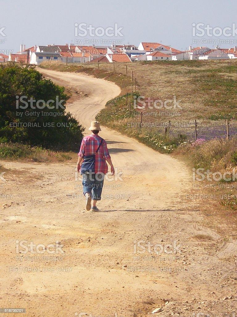 Lonesome wanderer in the desert stok fotoğrafı
