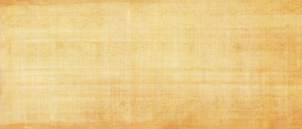 Long and wide background in horizontal position.Egyptian paper,papyrus old texture. Smooth yellow surface.Mediterranean region. Yellow smooth papyrus paper texture. papyrus paper stock pictures, royalty-free photos & images