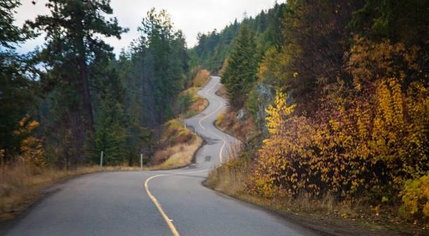 largo y sinuoso camino en otoño - viaje a canadá fotografías e imágenes de stock