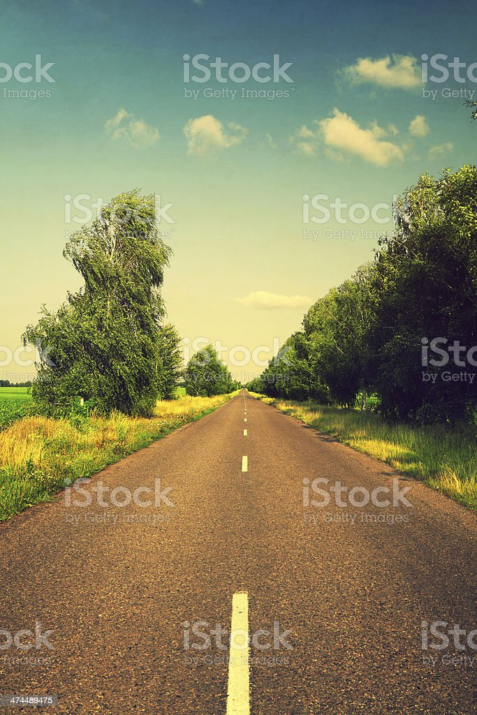 long asphalt road with green trees stock photo