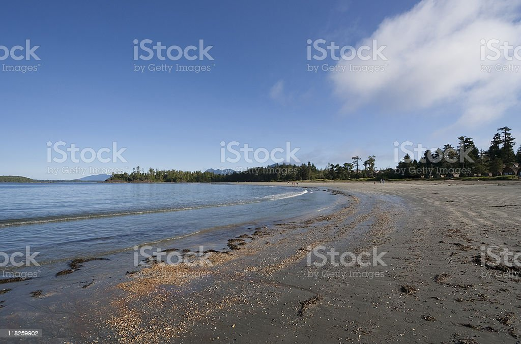 Long Beach and Temperate Rainforest stock photo