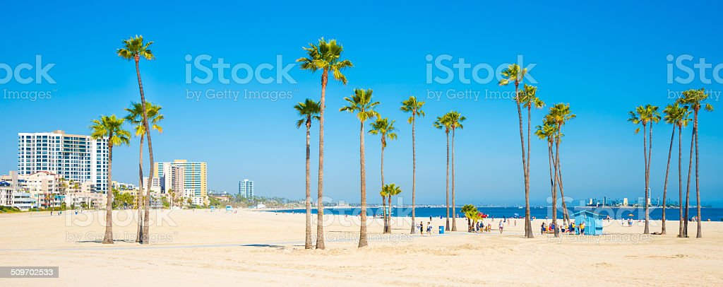 Long Beach California Skyline Palm Trees Royalty Free Stock Photo
