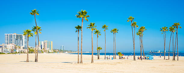 Long Beach California skyline, beach, palm trees Long Beach, California long beach california stock pictures, royalty-free photos & images