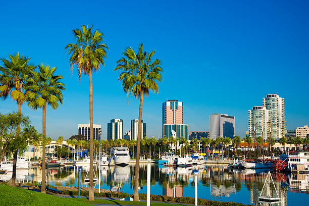 Long Beach Downtown Skyline With Palm Trees And Rainbow Harbor Stock Photo
