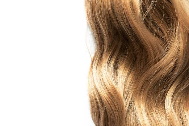 long blond wavy hair on white background long blond wavy hair isolated on white background highlights hair stock pictures, royalty-free photos & images