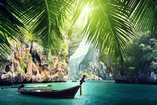 istock A long boat docked on beach in Krabi, Thailand summers 469733898