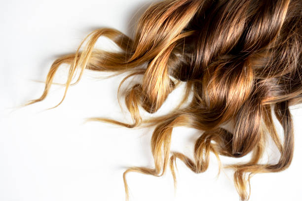 long brown curly hair on white isolated background - capelli ricci foto e immagini stock