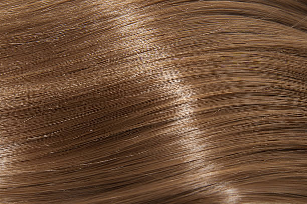 Long brown straight hair Long brown straight hair highlights hair stock pictures, royalty-free photos & images