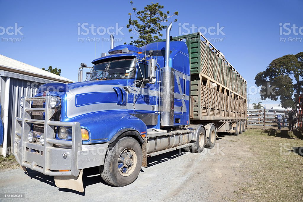 Long Cattle Truck Lorry at cattle sale yards stock photo