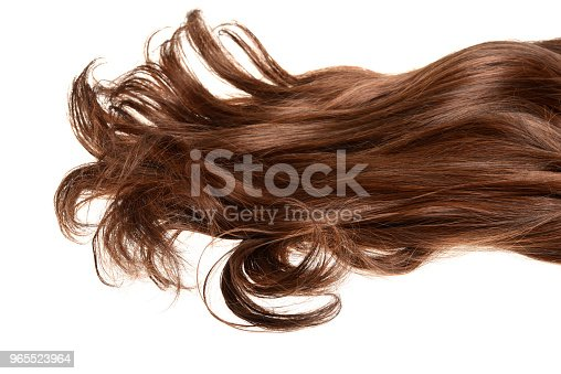 long curly brunette brown hair isolated on white