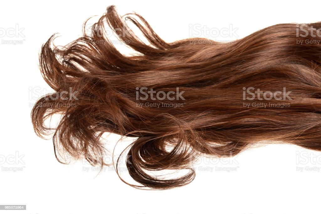 long curly brunette brown hair isolated stock photo
