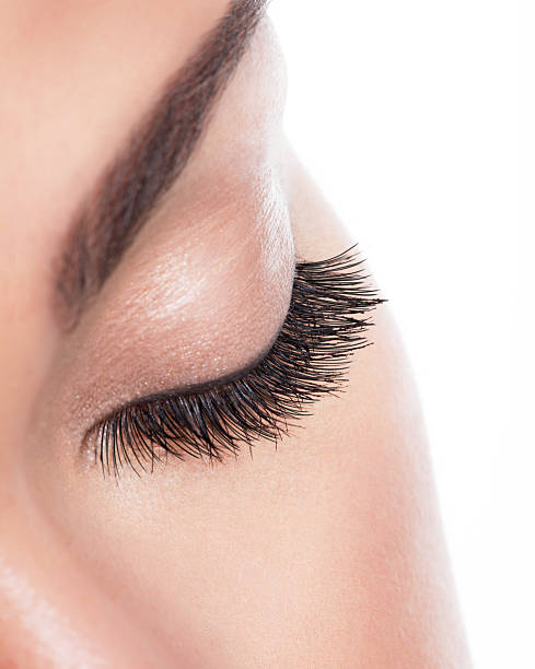 Long curly eyelashes macro image of  long curly eyelashes over white background false eyelash stock pictures, royalty-free photos & images