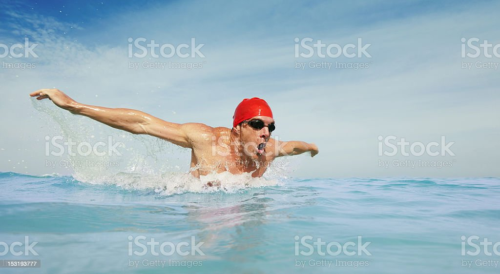Long distance swimmer royalty-free stock photo