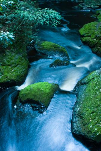 Waterfall: Bushkill Falls