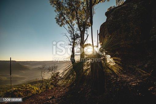 Location: Blue Mountains National Park, Sydney, Australia Shot with Nikon D800E