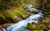 Long exposure photo of Radowna river flowing through the scenic Vintgar gorge in Slovenia in full autumn