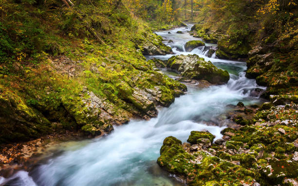 Long exposure photo of Radowna river flowing through the scenic Vintgar gorge in Slovenia stock photo