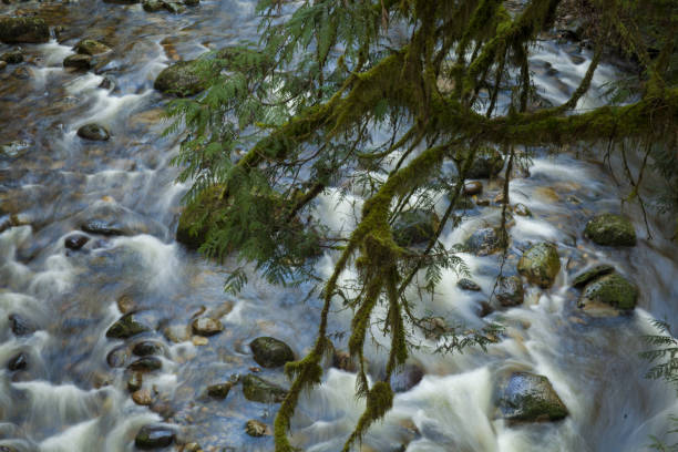 Long Exposure Water over Rocks stock photo