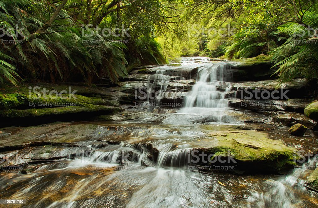 Long gentle tiered forest waterfall in Blue Mountains, Australia stock photo