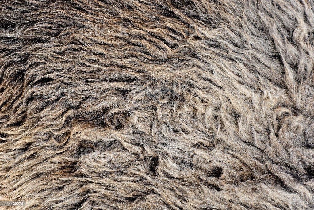 Langes Haar woolen-Hintergrund Lizenzfreies stock-foto