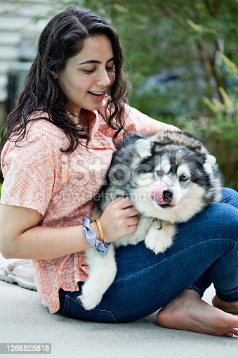 Nepalese young adult gets to know her Alaskan Klee Kai dog in her Virginia backyard (focus on woman)
