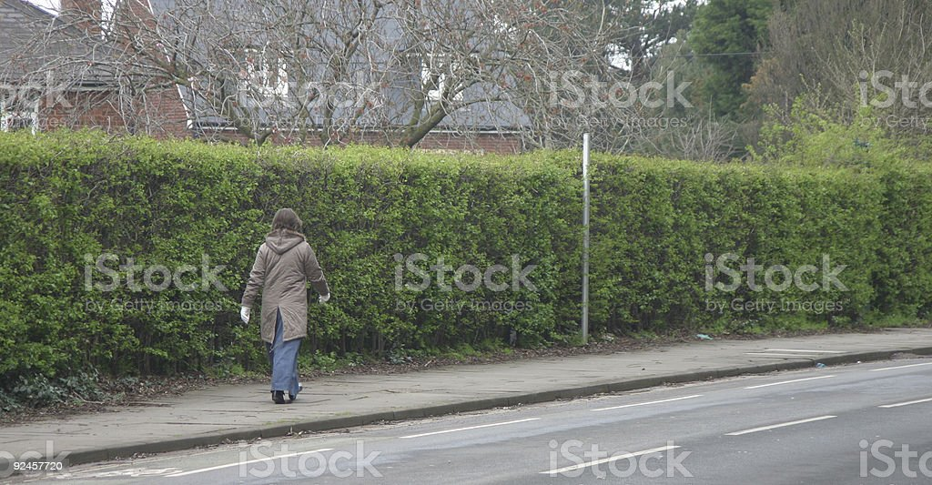 Long hedge stock photo