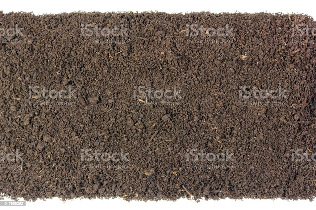 Long isolated strip of the fertile soil humus compost. Top view. There are insects and parts of  rotted plants. Earth texture stock photo