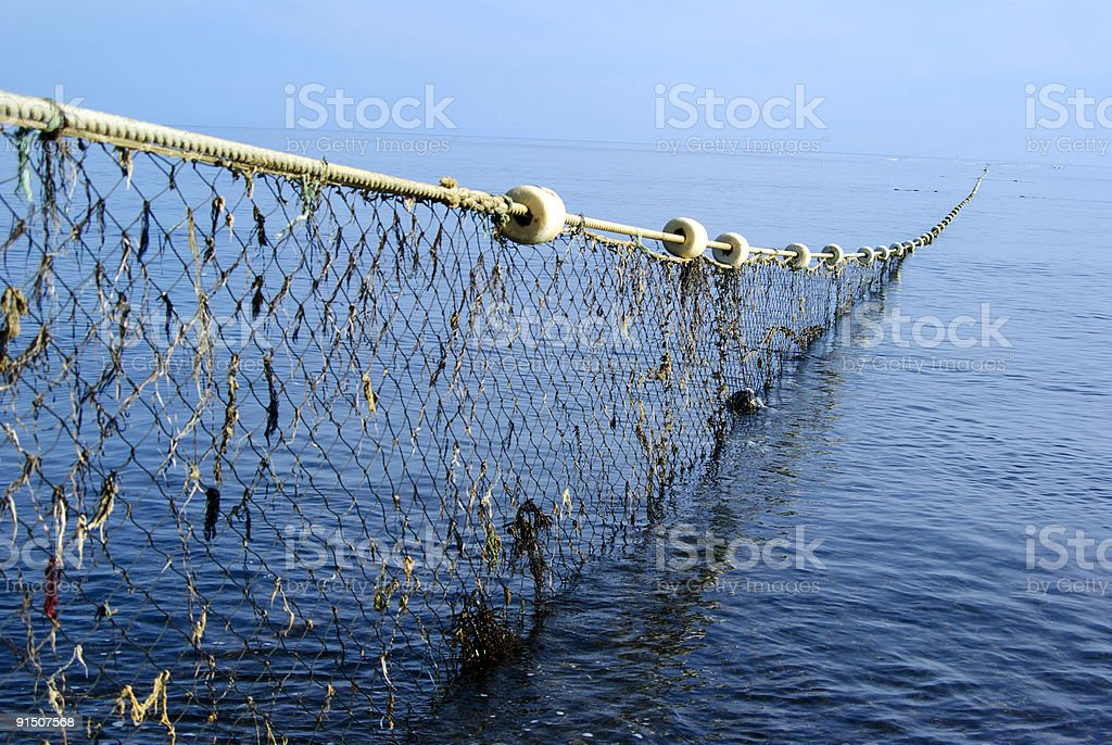 Long net going thought the ocean royalty-free stock photo