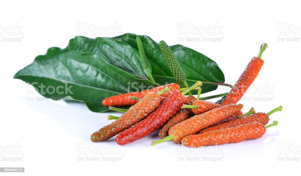 Long pepper isolated on the white background royalty-free stock photo
