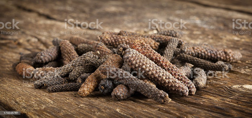 Long pepper or Piper longum royalty-free stock photo