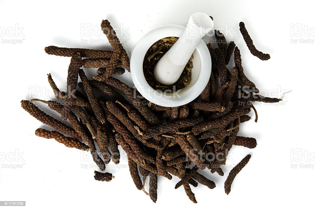 Long pepper or Pipli or Dipli (Piper longum) isolated stock photo
