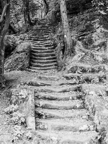 istock Long sandstone stairs in the forest, Mseno, Kokorinsko, Czech Republic 700360126