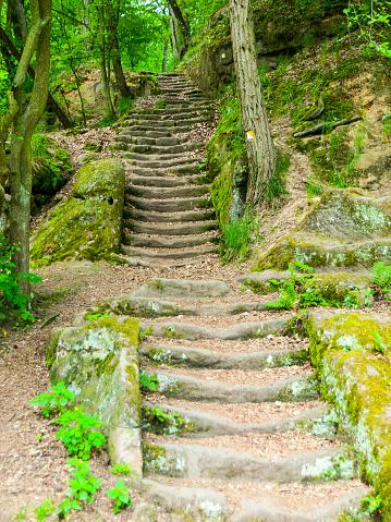 istock Long sandstone stairs in the forest, Mseno, Kokorinsko, Czech Republic 800423860
