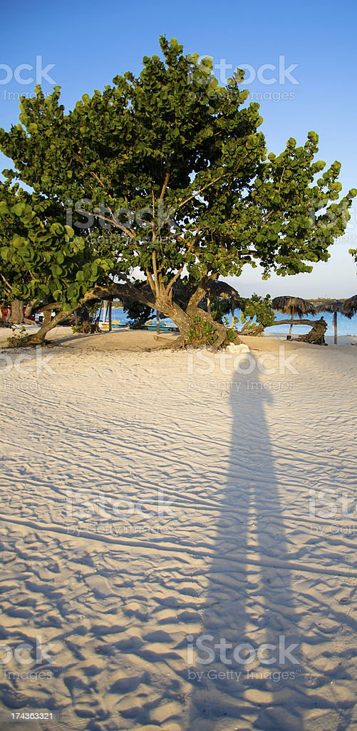 Long shadow photographer on the beach. stock photo