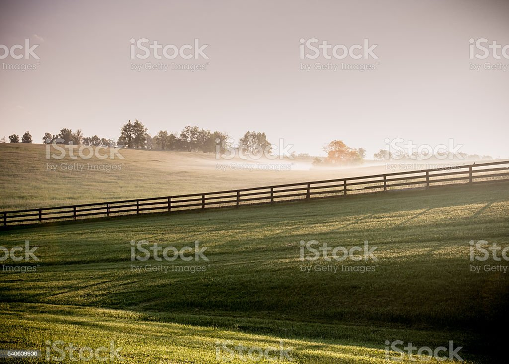 Long Shadows of Horse Fences in the Fog stock photo