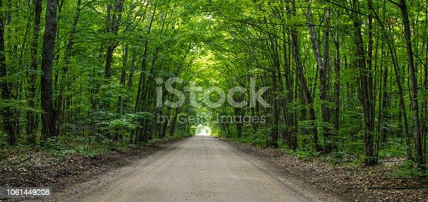 istock Long Straight Rural Dirt Road Through A Dense Green Forest 1061449208